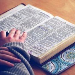 ¿Sabe quien escribió el Salmo 121 de la Biblia? Descúbralo aquí
