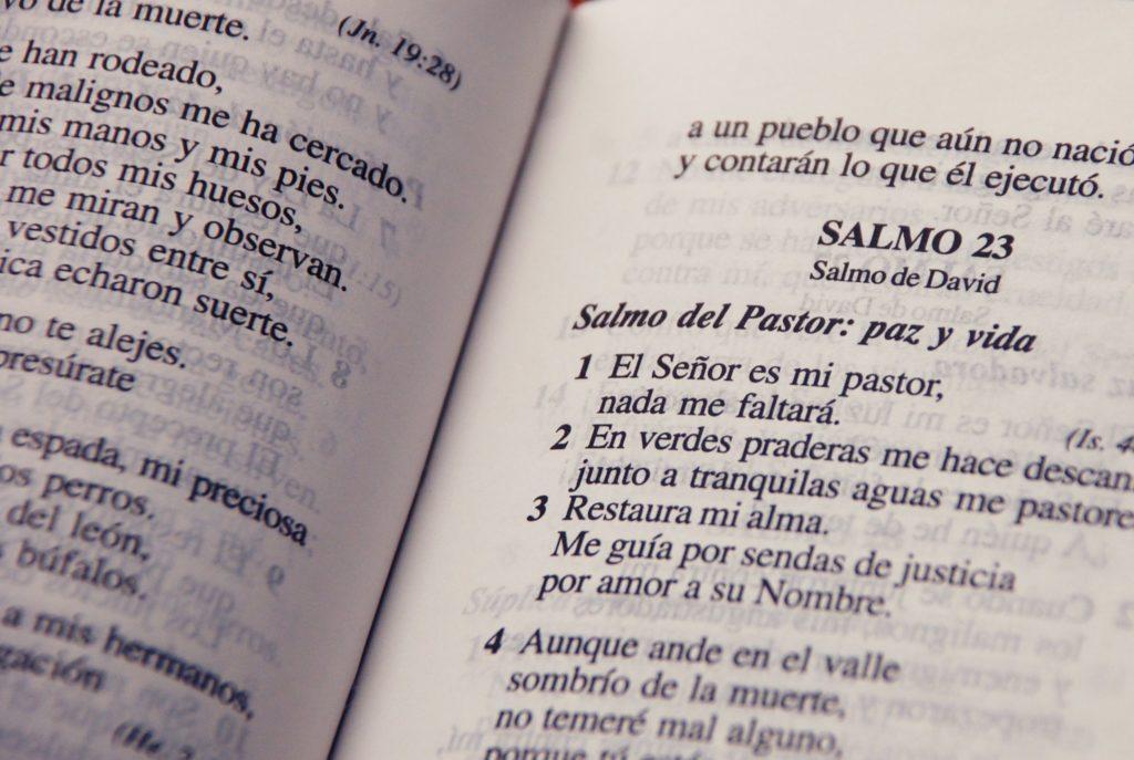 CUANTOS LIBROS TIENE LA BIBLIA REINA VALERA
