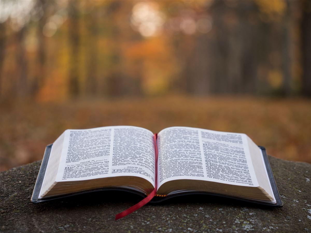 Citas-Bíblicas-3