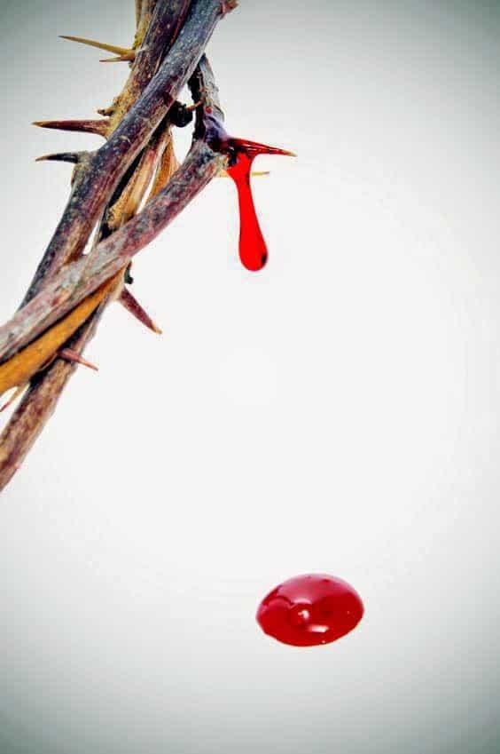 Novena-a-la-Sangre-de-Cristo-4