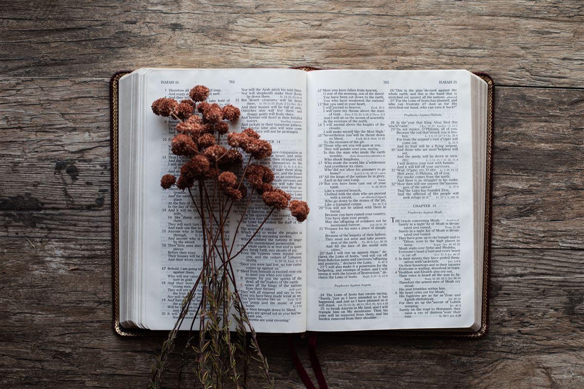 versículos de ofrenda
